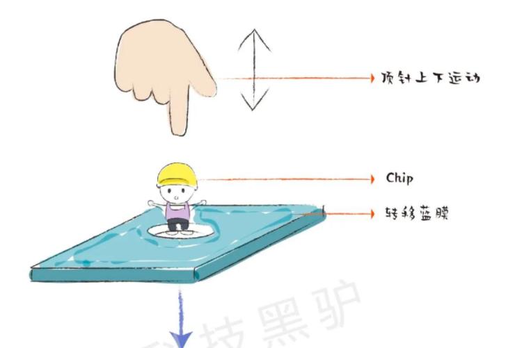 什么是MiniLED,图片解说  第10张