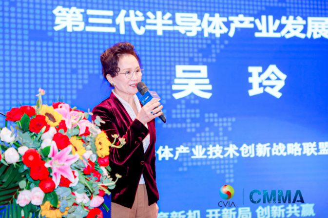 中国电子视像行业协会Mini/MicroLED显示产业分会第一次成员大会暨新一代显示产业高质量发展论坛成功举办  第8张
