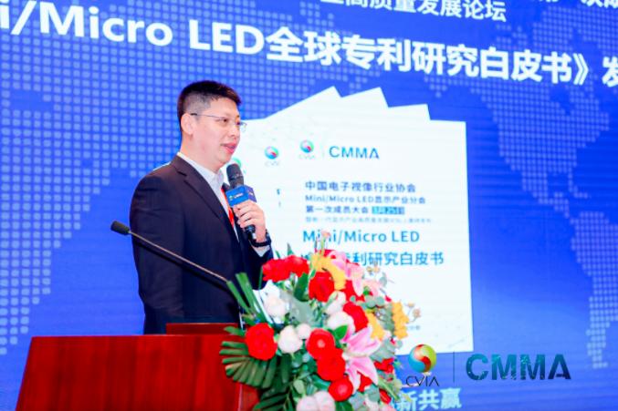 中国电子视像行业协会Mini/MicroLED显示产业分会第一次成员大会暨新一代显示产业高质量发展论坛成功举办  第21张