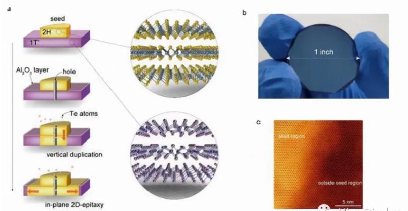 MicroLED迎来全新技术路线:南大王欣然教授与天马合作在二维半导体领域获重大突破  第3张